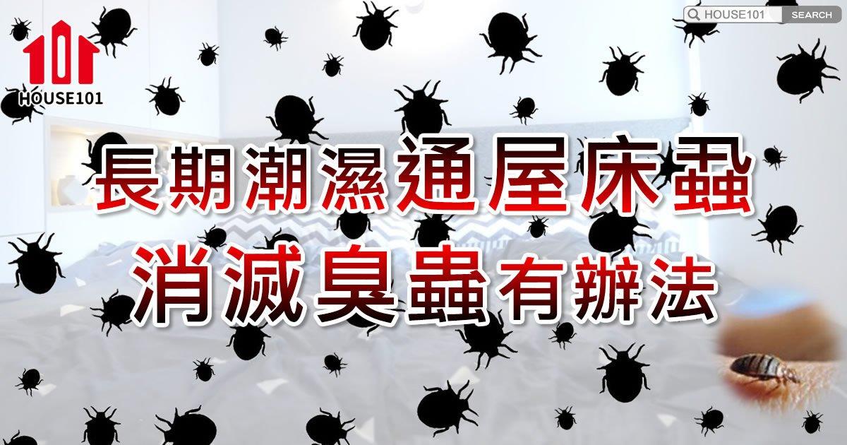 【健康生活】長期潮濕孳生床蝨、皮膚敏感極痕癢?滅蝨有辦法!